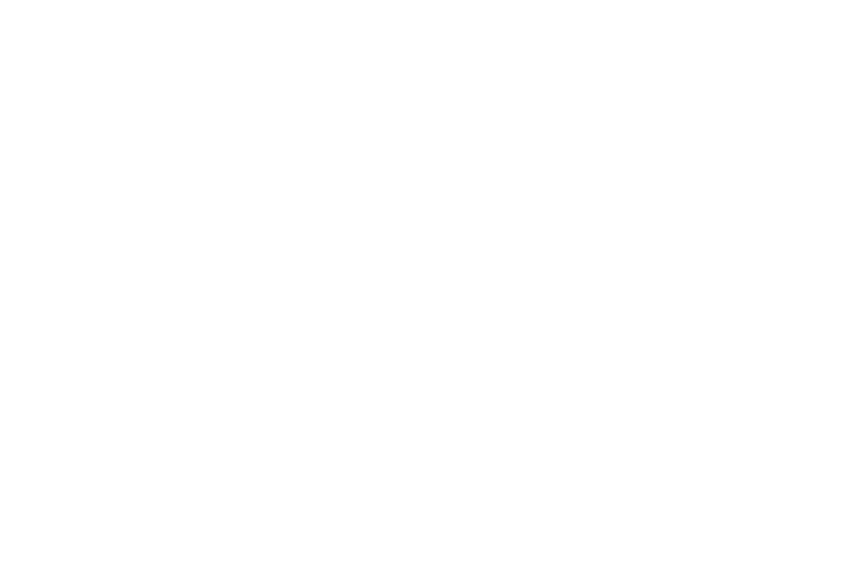 Familie im Zentrum FiZ e.V.
